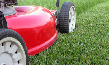 Lawn Care in Troy MI Lawn Care Services in Troy MI Quality Lawn Care in Troy MI